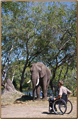 Access Africa guidebook author recommends safaris for people with limited mobility.