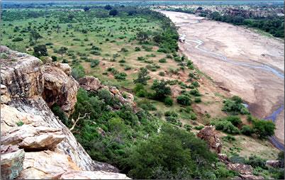Tuli wilderness in Botswana.