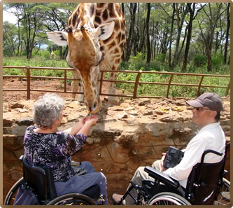 Nairobi Kenya's Giraff Feeding Centre is accessible to people with limited mobility, including wheelchair users.