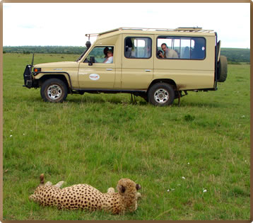 A safari drive in a wheelchair-adapted vehicle makes Masai Mara game reserve in southwest Kenya accessible to all.