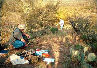 Volunteer vacations in archaeology in Arizona.