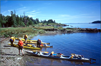 Sea kayaking and camping at Deer Island, Bay of Fundy.