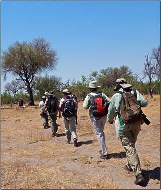 Walking Safari in Botswana's Okavango Delta.