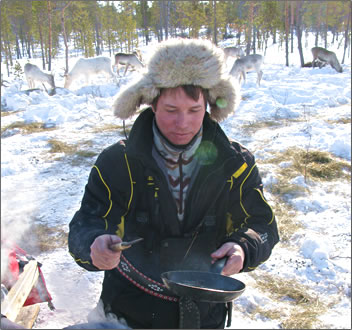 Frying reindeer meat for camp meal in Lapland.