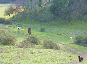 Horseback riding vacations in Tuscany, Italy.