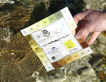 Coral Health Chart allows volunteer vacationers to Heron Island to monitor coral bleaching.