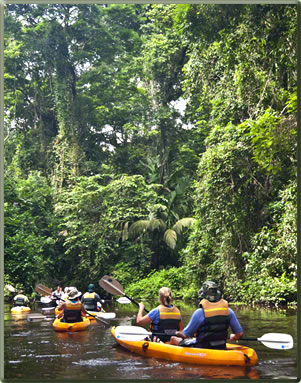 Kayaking on Tortuguero's rivers, Costa Rica's top National Parks.