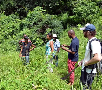 During a Homestays Grenada visit, volunteer and learn at an organic farmer's farm.
