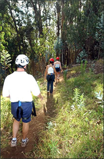 Walking to the first platform for Maui's zipline adventure.