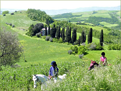 Horseback riding vacations and lessons in Tuscany.