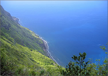 Molokai sea cliffs are tallest in the world.