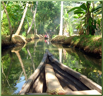 Kerala canoe village tours.