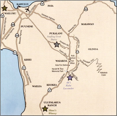 Map of Upcountry Maui agri-tourism, including Surfing Goat Dairy, Ali`i's Kula Lavender and Maui's Winery.