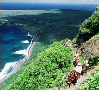 Molokai Mule Ride into Hawaii's Leper Colony History.