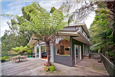 House sitting a tree house in New Zealand: house and pet sitting travel.