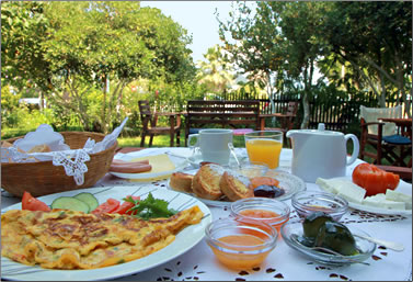 Country inn in northern Greece, countryside holidays in Europe.