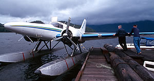 Wildlife tours in British Columbia by sea plane.