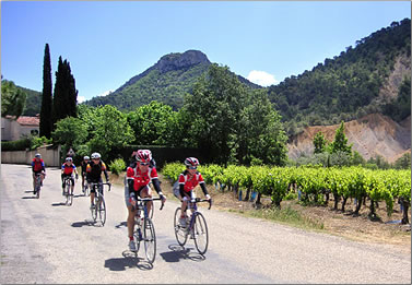 Cycling vacations, Provence, France.