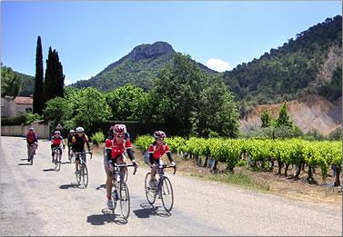 Cycling vacations, Provence, France.