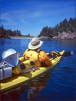 Kayaking vacations offer nature pictures and wildlife encounters on the Bay of Fundy.
