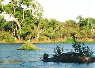 El Fuerte River offers memorable nature pictures on Mexican holidays.