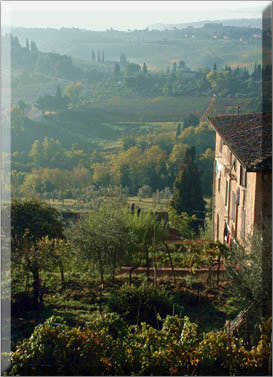 San Gimignano on a culinary walking holiday in Italy.