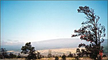 Mauna Loa volcano on Hawaii's Big Island.
