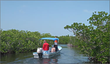 Natural waterways and canals of Sian Kaan Biosphere Reserve.