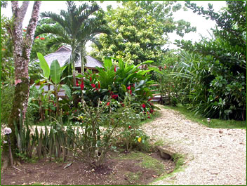 Trinidad Accommodation: Acajou Hotel at Grande Riviere.