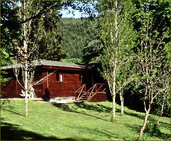 Accommodation is cosy timber lodges at the Aigas Field Centre.