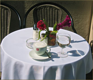 Vienna budget holidays by Alison Gardner, Vienna coffee houses.