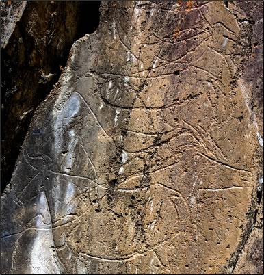 Ice Age Rock Art in Portugal's Côa Valley, Penascosa open air site.