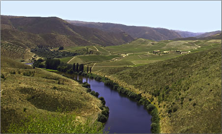 Portugal's Coa River Valley landscape.