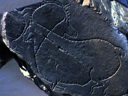 prehistoric rock art in northeastern Portugal's Coa Valley.