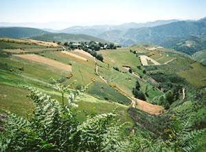 Countryside on the Camino de Santiago walking trail, Spain