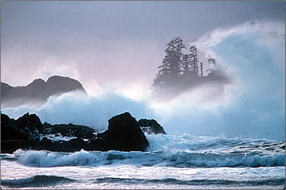 Winter storm waves on Canada's West Coast.