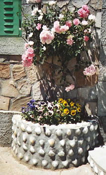 A roadside garden decorated with scallop shells