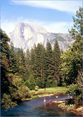 Half Dome in Yosemite National Park in California.