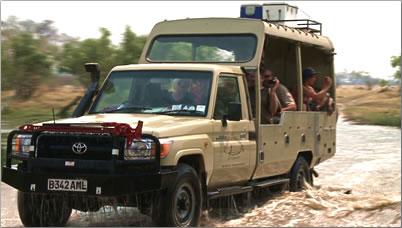 Video photography on African safari.