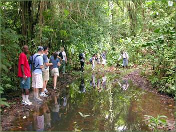Adventure travel Trinidad parks Nariva Swamp.