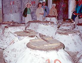 Adatepe Olive Oil Museum, Agri-tourism in Turkey