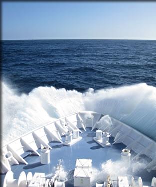 Adventure travel small-ship cruising, expedition cruising Subantarctic islands.