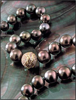 Polynesia Black Pearls: how they grow, how to select the best for jewelry.