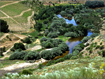 Ice Age settlement site in Portugal's Coa Valley.