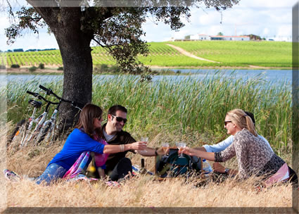 Wine Tourism in Portugal, memorable wine tasting tips.