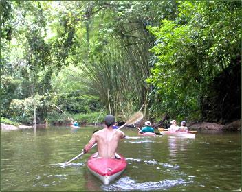 kayaking in Trinidad rainforests.