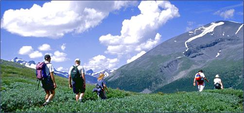 Trekking Poles Make Walking and Hiking Safe for Seniors!