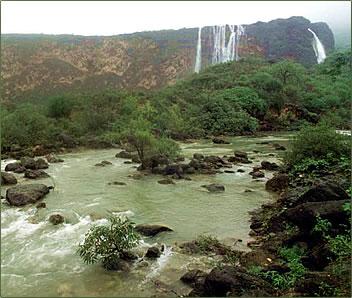 Salalah Oman monsoons, Oman Salalah nature.