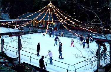 Outdoor Large Christmas Lights