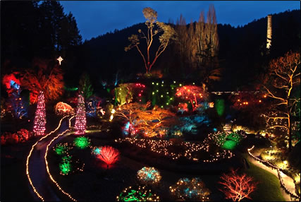 Winter Pleasures at The Butchart Gardens, Victoria, Canada.